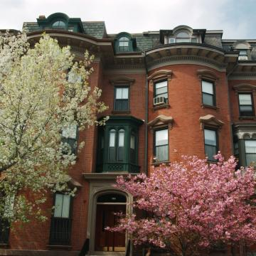 Front exterior of building with flowering trees
