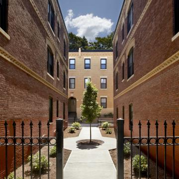 Narrow courtyard between buildings with tree in center
